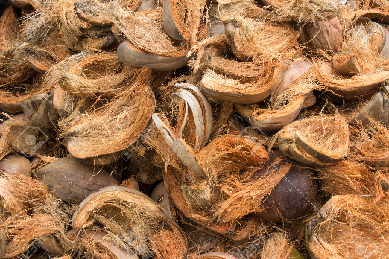 charbon vegetal coques de noix de coco